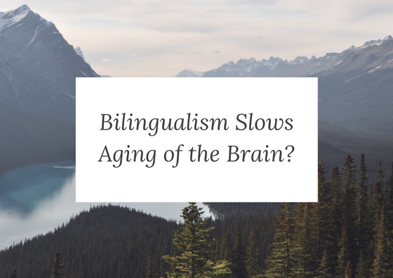 Research states that language-learning slows aging of brain