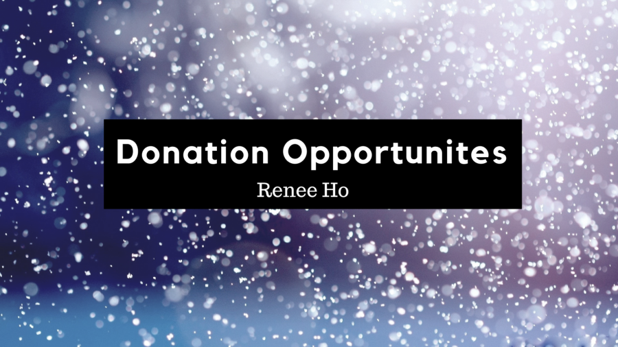 Donation+Opportunities