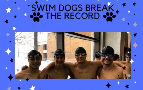 Swim Dogs Break the Record
