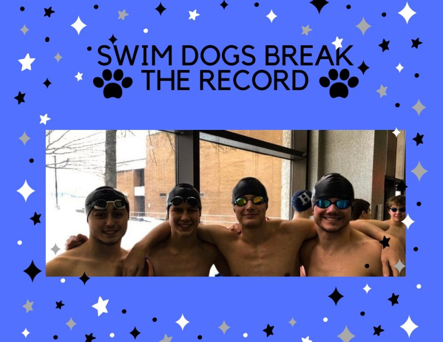 Swim+Dogs+Break+the+Record