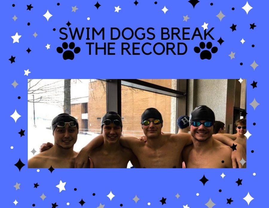 Swim Dogs Break the Record