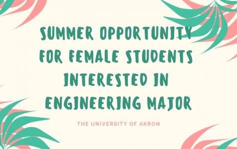 Summer opportunity for female students interested in engineering major